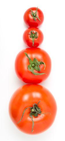 Free Tomato Abstract Stock Photo - 18334260
