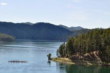 Free Black Hills Lake Royalty Free Stock Photo - 18336165