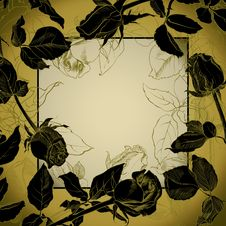 Free Black Roses Frame Stock Photography - 18336702