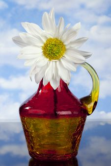 Free White  Daisy In Red, Orange And Yellow  Bottle Royalty Free Stock Photography - 18339237