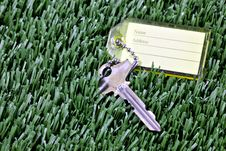 Free Key With ID Tag Laying In Mown Grass Royalty Free Stock Photo - 18339245