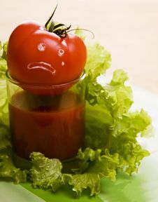 Tomato. When Tomatos Cry... Royalty Free Stock Photo