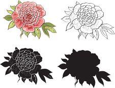 Free Roses Royalty Free Stock Photos - 18343228