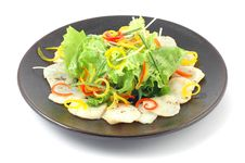 Free Salad With Vegetables Royalty Free Stock Image - 18347086