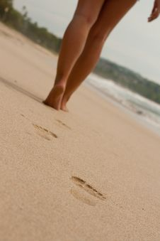 Free Footprints In The Sand Royalty Free Stock Images - 18347449