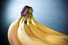 Free Banana Macro Art Royalty Free Stock Image - 18347996