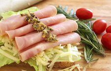 Tasty Open Sandwich On Wholewheat Bread Stock Image
