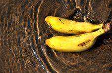 Free Pair Of Banana In Water Royalty Free Stock Photo - 18350055