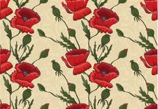 Floral Wallpaper With Poppies Royalty Free Stock Photos