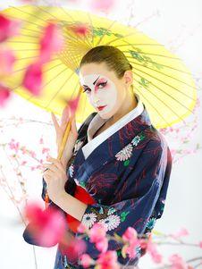 Free Japan Geisha Woman With Creative Make-up Stock Image - 18351161