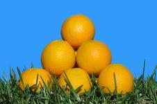 Free Oranges Stock Image - 18351871