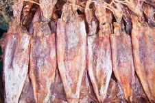Dried Calamari In Seafood Market Stock Photography