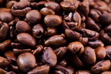 Free Coffee Beans Royalty Free Stock Images - 18353979