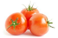 Free Red Tomato Royalty Free Stock Image - 18355076