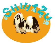 Free Shih-Tzu  Dog Royalty Free Stock Image - 18355696