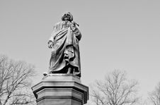 Free Statue Of Linné Royalty Free Stock Photo - 18356135