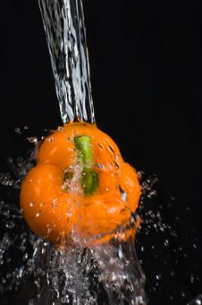 Free Orange Pepper Royalty Free Stock Image - 18358396