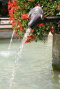 Free Pigeon Drinking From A Fountain Stock Photography - 18362422