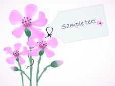 Free Three Flowers Stock Photography - 18360512