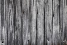 Free Wood Royalty Free Stock Images - 18366699