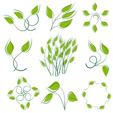 Free A Set Of Green Leaves Stock Photography - 18366982