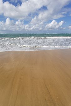 Free Beach And Ocean Royalty Free Stock Photography - 18368657