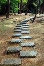 Free Stone Path In The Woods Stock Image - 18378041