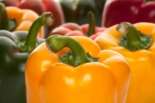 Free Red Pepper Stock Photography - 18372042