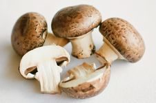 Free Mushrooms &x28;champignons&x29; Stock Image - 18372171