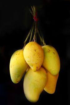 Free Mango Stock Photos - 18373903