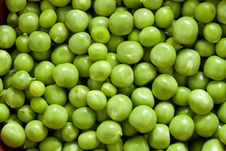 Free Shelling Peas Royalty Free Stock Images - 18374229
