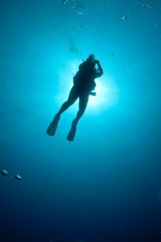 Free Silhouetted Scuba Diver Royalty Free Stock Photography - 18374527