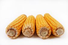 Free Four Ripe Ear Of Corn Royalty Free Stock Images - 18375809