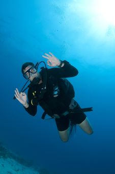 Free Scuba Diver On Coral Reef Royalty Free Stock Photo - 18375985