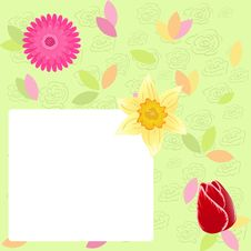 Free Spring Background Royalty Free Stock Images - 18376629