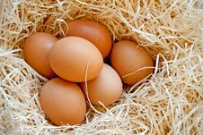 Free Six Heg Eggs Royalty Free Stock Photos - 18376778