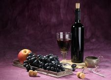 Still Life With Vine Royalty Free Stock Images