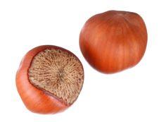 Free Hazelnuts. Macro. Royalty Free Stock Photos - 18378418
