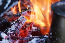 Free Camp Fire. Royalty Free Stock Photography - 18378447