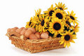 Free Basket Filled With Eggs Stock Photography - 18387602