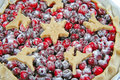 Free Cranberry Tart. Isolated. Stock Photo - 18389410