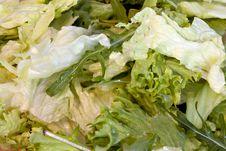 Free Spring Salad Stock Photos - 18381333