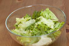 Free Spring Salad Stock Photo - 18381350