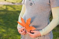 Free Pregnant Woman Relaxing In The Autumn Park Stock Photos - 18382503