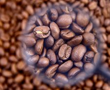 Free Coffee Beans Espresso Royalty Free Stock Images - 18382779