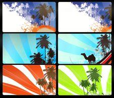 Free Palm Tree Stock Photo - 18383390