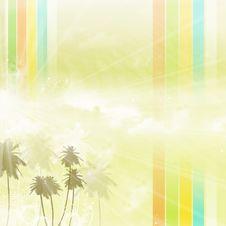 Free Palm Tree Stock Photos - 18383843