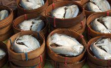 Free Mackerel Stock Images - 18389344