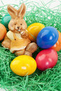 Free Easter Bunny Royalty Free Stock Image - 18391856