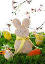 Free Easter Bunny Cookie Stock Photos - 18394453